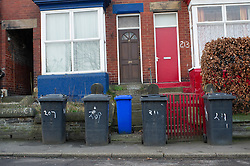 Wheelie bins waiting for collection