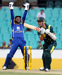 © Licensed to London News Pictures. 17/02/2012. Sydney Cricket Ground, Australia. Wicket keeper Kumar Sangakkara appeals loudly after a close call for batsmen Clint Mc Kay during the One Day International cricket match between Australia Vs Sri Lanka. Photo credit : Asanka Brendon Ratnayake/LNP