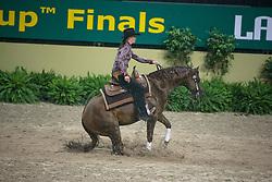 Poels Ann (BEL) - Whizle Fritz<br /> World Cup Final Las Vegas 2009<br /> Photo © Dirk Caremans