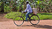 Alafats Basitwire, a coffee farmer brings his beans on a bike to sell to Ibero through the Kulika project in the Kamuli region of Uganda. Alafats is part of the Kulika project that runs a Sustainable Organic Agricultural Training Program.