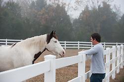 man looking at a beautiful horse
