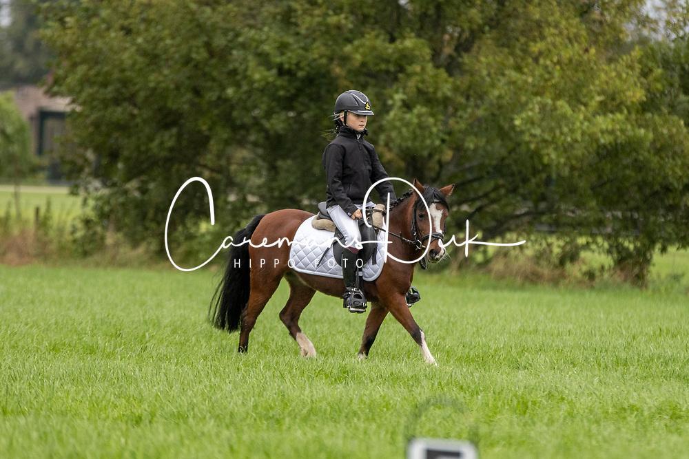 De Pauw Hanne, BEL, Tjitji<br /> Nationaal Kampioenschap LRV <br /> Ponies Dressuur - Oudenaarde 2020<br /> © Hippo Foto - Dirk Caremans<br /> 03/10/2020