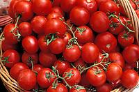Italie - Toscane - Étales d'un marché - Tomates en grappes