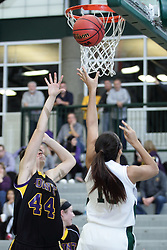 12 December 2015:  Gabby Weber gets inside of Taylor Barrett for a shot during an NCAA women's basketball game between the Wisconsin Stevens Point Pointers and the Illinois Wesleyan Titans in Shirk Center, Bloomington IL