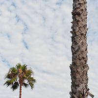 San Diego - SoCal