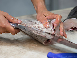 Man cutting fish with knife, Getxo, Algorta, Basque Country, Biscay, Spain, Europe