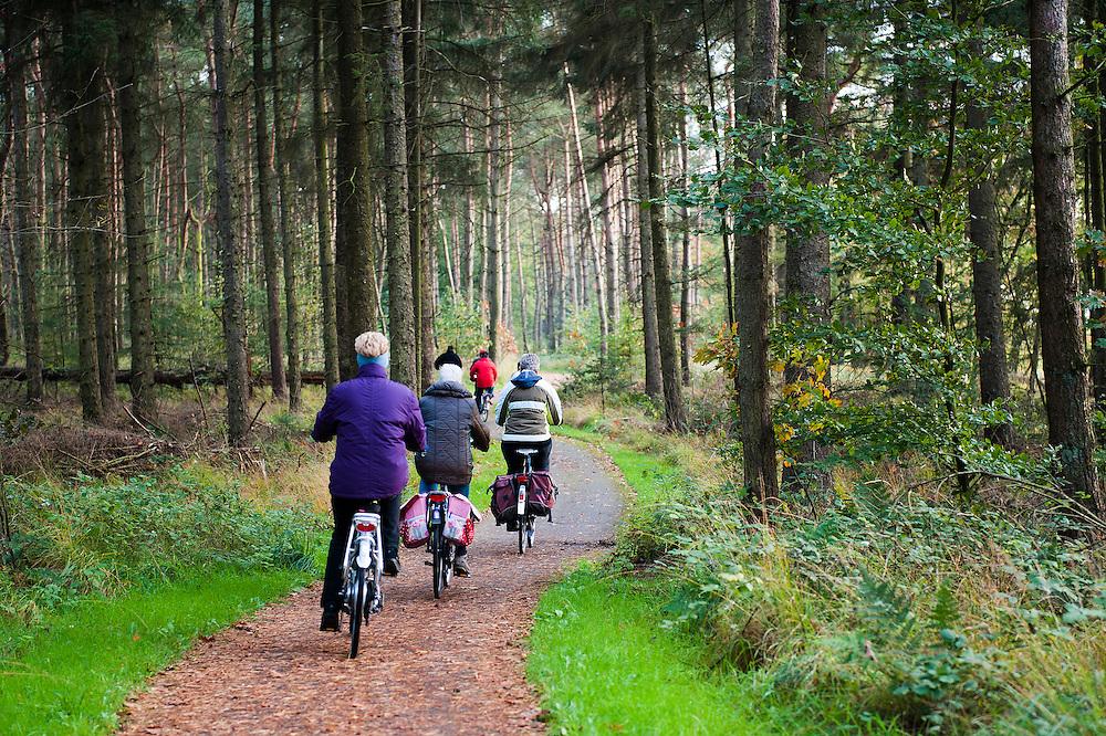 Nederland, Schoonloo, 22 okt 2011.Toeristen fietsen door drenthe..Herfst..Foto(c): Michiel Wijnbergh
