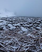 Light snow covers rocks and seaweed at Unstad beach, Vestvågøy, Lofoten Islands, Norway