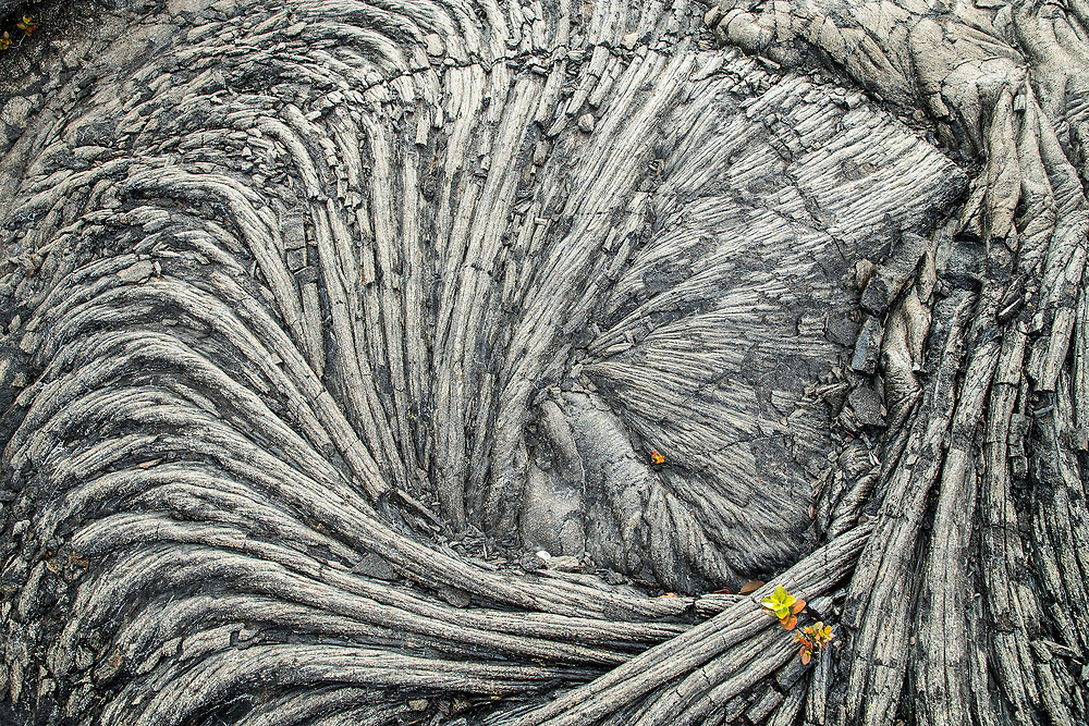 SPIRAL LAVA FORMATION DETAIL, HAWAII VOLCANOES NATIONAL PARK, HAWAII