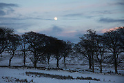 An almost full moon rises over a wintry landscape on 28th of December 2020 in Stow, Scottish Border, United Kingdom. The few trees up in the hills are barren and black and the white snow almost covers the fields.