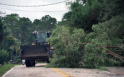 October 7, 2016 - Florida, U.S. - A tree that fell on N. Riverside Drive in Tequesta is cleared off the road Friday morning. (Credit Image: © Melanie Bell/The Palm Beach Post via ZUMA Wire)