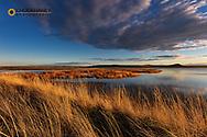Sunset along wetlands of Freezeout Lake WMA near Fairfield, Montana, USA