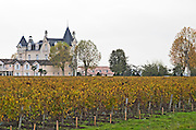 Vineyard. Chateau Hotel Grand Barrail. Saint Emilion, Bordeaux, France