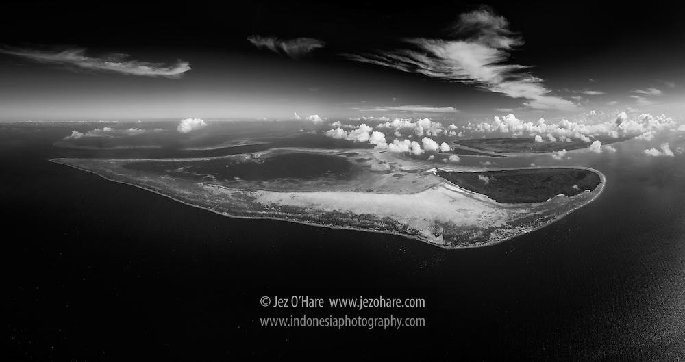 Tomia reef, Wakatobi National Park, Tukang Besi Islands, South East Sulawesi, Indonesia
