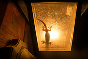A gekko sits inside an outdoor light waiting for insects attracted to the light.