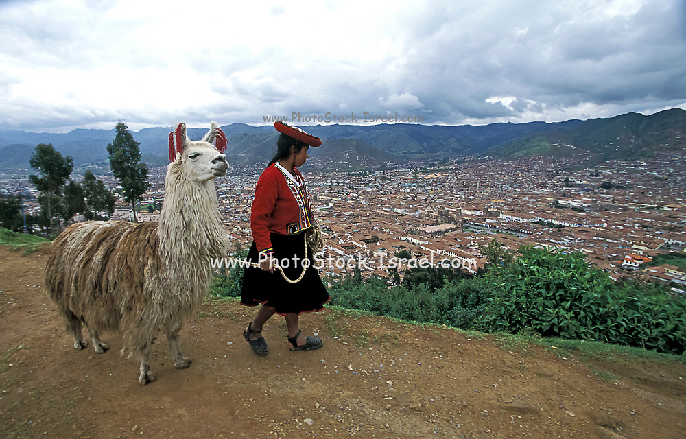 Indigenous Woman with her Alpaca overlooking Cusco, Peru