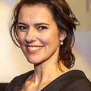NLD/Amsterdam/20150414 - Onthulling van de Nederlandse stemmencast van de Minions, Susan Visser