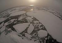 Pack ice on sea in fog, Svalbard, Norway.