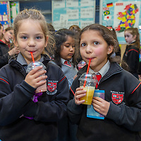 Emma Grabska and Laura Kareamba enjoy the smoothies on offer at the Jessies Fruity Express showcase day at Ennis National school