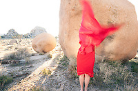 Woman cloaked in red blur standing in a dramatic stone landscape.