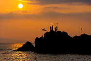 Silhouette of Diver Leaping off Rock and into the Water around Sunset in Maui, Hawaii