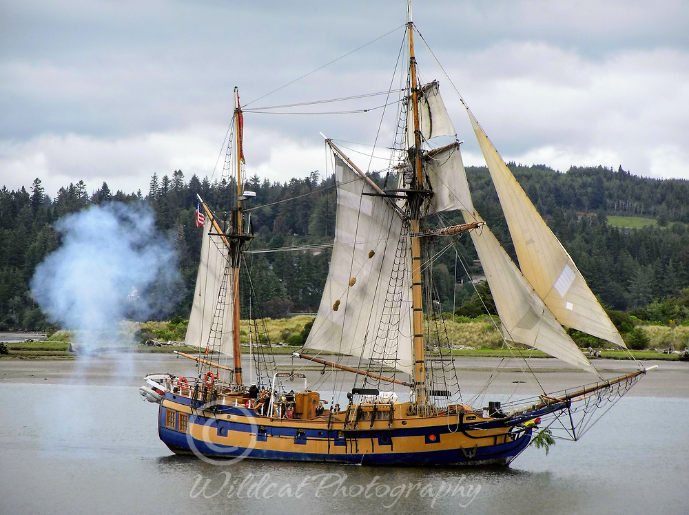 The Hawaiian Chiefton under sail