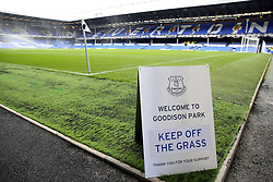 A view of the pitch at Goodison Park before the game