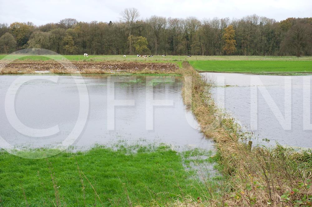 OMMEN eo - Hoog water Vecht<br /> Foto: gedeeltelijk onder gelopen weiland aan de Varsenerweg in Ommen.<br /> FFU PRESS AGENCY COPYRIGHT FRANK UIJLENBROEK