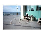 Man with the birds on the Huntington Beach Pier.
