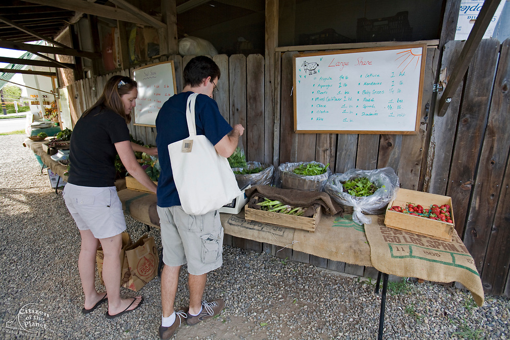 The Community Supported Agriculture program allows members to take home seasonal produce on a weekly basis, by pre-paying a year for either a small or large share. The Center for Urban Agriculture at Fairview Gardens is one of the oldest organic farms in California. Located on 12 acres, the 100-year-old farm provides the community with organic fruits and vegetables and through educational programs and public outreach demonstrate the economic viability of sustainable agricultural methods. Goleta, California