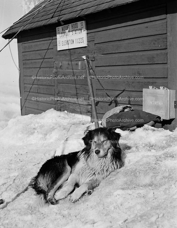 "9969-0461. ""Ranger"" on the summit of Mt. Hood. May 3, 1931."