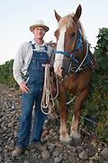 Horsepower, Milton-Freewater, Oregon