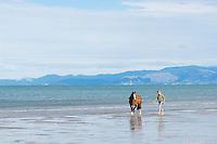 female walking horse along empty beach
