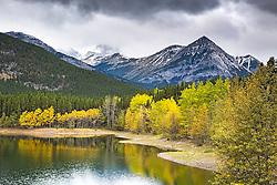 Golden aspen, lake, Kananaskis Valley, Alberta, Canada