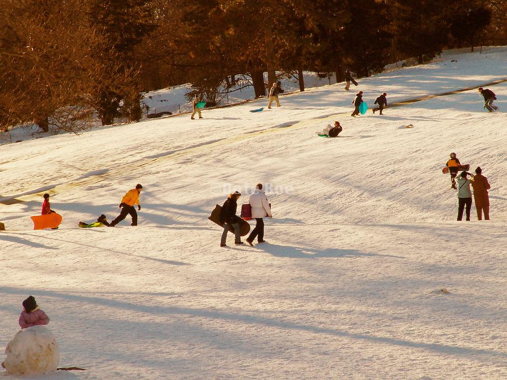 People sledding in Central park New York.