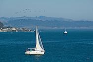Sailboat in Monterey Bay, Santa Cruz, California