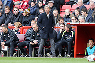 José Riga, the Charlton Athletic manager looks on from the dugout. Skybet football league championship match, Charlton Athletic v Brighton & Hove Albion at The Valley  in London on Saturday 23rd April 2016.<br /> pic by John Patrick Fletcher, Andrew Orchard sports photography.