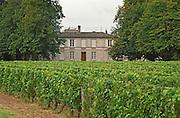 Vineyard. Chateau Rahoul, Graves, Bordeaux France