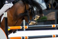 Verlooy Jos, BEL, Fabregas<br /> Brussels Stephex Masters<br /> © Hippo Foto - Sharon Vandeput<br /> 26/08/21
