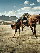 Mongolian showing off their skills on horseback, picking up pegs stuck in the ground, riding full speed.<br /> <br /> Eagle Hunting festival in Western Mongolia, in the province of Bayan Olgii. Mongolian and Kazak eagle hunters come to compete for 2 days at this yearly gathering. Mongolia