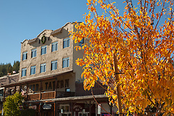 """""""Downtown Truckee in the Fall 3"""" - Photograph of the Sierra Tavern and other businesses in Downtown Truckee in the fall with the yellow leaves of a tree in the foreground."""