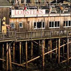 A scene in Bar Harbor Maine USA