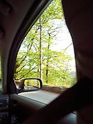 Green trees blur as a car passes by, Lake District, UK