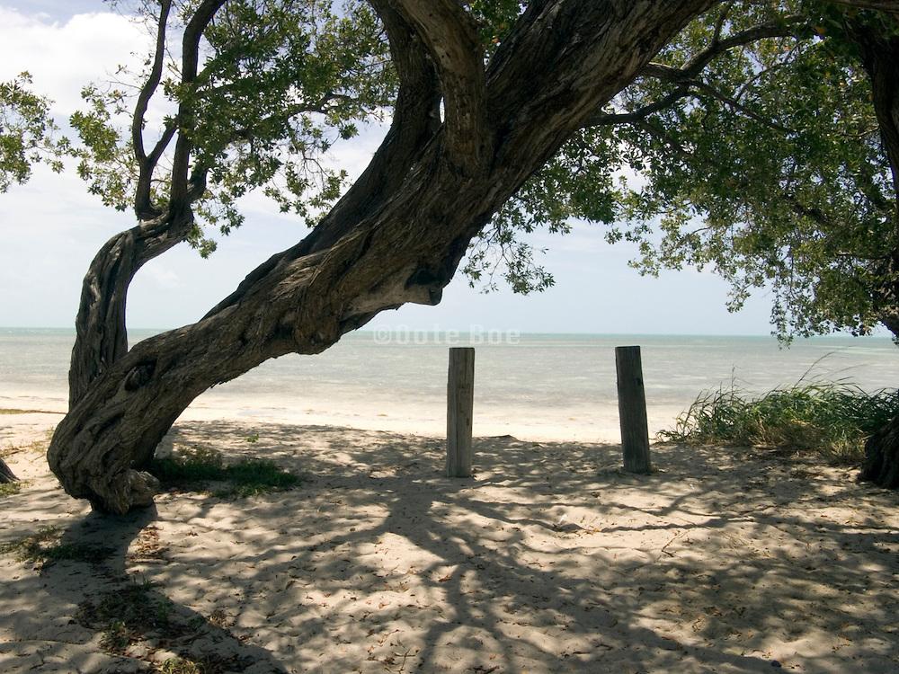 tropical paradise Florida Keys USA