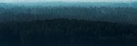 Podlasie. N/z Puszcza Knyszynska widok ze Wzgorz Swietojanskich fot Michal Kosc / AGENCJA WSCHOD