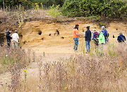Geology fieldtrip at Sutton Knoll SSSI, Rockhall Wood Pit, Sutton, Suffolk, England, UK