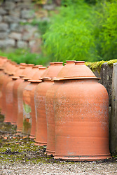 Terracotta rhubarb forcers in the kitchen garden at Chatsworth House, Derbyshire