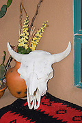 Vertical of cow skull with Indian blanket and flowers in pot