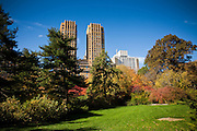 Autumn colors in Strawberry Fields in Central Park in New York City.