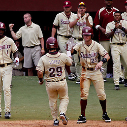 June 05, 2011; Tallahassee, FL, USA; Florida State Seminoles catcher Rafel Lopez (29) celebrates with teammates after scoring  against the Alabama Crimson Tide during the fourth inning of the Tallahassee regional of the 2011 NCAA baseball tournament at Dick Howser Stadium. Mandatory Credit: Derick E. Hingle